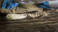 Płód w trumnie XVII-wiecznego biskupa. Szwedzcy naukowcy odkryli jego tożsamość