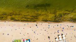 Żółta woda w Bałtyku. Zaskakujące zdjęcia z Zatoki Gdańskiej