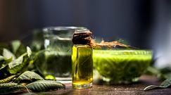 Pielęgnacja roślin doniczkowych olejkiem neem. Spektakularne efekty