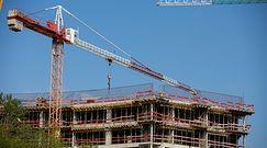 Nowy Ład wprowadzi bon mieszkaniowy? Ekspert chwali inicjatywę rządu