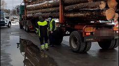 Jechali ciężarówkami z drewnem po Koszalinie. W każdej chwili mogło dojść do tragedii