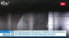 Wstrząsające nagrania z fermy norek. Reakcja Beaty Kempy