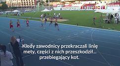 #dziejesiewsporcie: sprinterzy w szoku! Tego na mecie nie spodziewali się