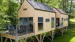 """Domek na drzewie. Ile kosztuje i jak go zbudować? Oto """"Pomysł na dom"""""""
