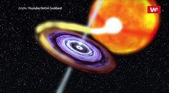 """""""Żarłoczne"""" czarne dziury. Naukowcy wreszcie wiedzą, jak wpływają na gwiazdy"""