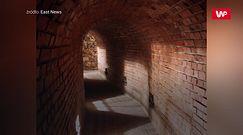 Opatowskie podziemia pełne sekretów. Tajemnicze tunele rozciągają się pod miastem
