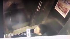6-latek obsikał przyciski w windzie