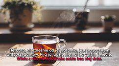 Co się dzieje w organizmie, gdy pijesz herbatę?