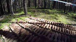 Gigantyczne znalezisko w lesie na Mazowszu