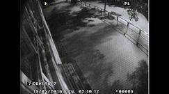 Seria podpaleń na poznańskim Sołaczu. Policja opublikowała nagranie