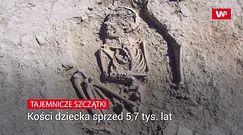 Badacze odkryli przedziwne szczątki