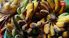Brązowa skórka na bananach. Tylko przypadkiem nie wyrzucaj owoców