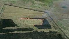 Wypalali trawy. Wpadli przez policyjnego drona