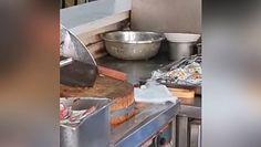 Szczury w szpitalnej kuchni. Przerażające nagranie z Chin