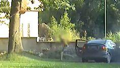 Pościg w Ząbkowicach Śląskich. Chciał uciec policji, uderzył w mur i zgubił swoje dokumenty