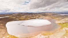 Lasy na Grenlandii. Niesamowite odkrycie sprzed miliona lat