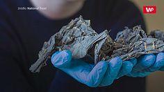 Katolickie artefakty pod podłogą domu. Mogły być przyczyną śmierci całej rodziny