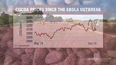 Ebola uderzy w przemysł czekoladowy?