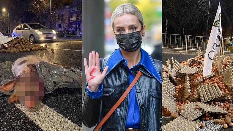 """Agnieszka Woźniak-Starak oburzona MARTWĄ ŚWINIĄ na ulicy. """"Tyle dla rolników znaczy życie zwierząt, z których żyją"""""""