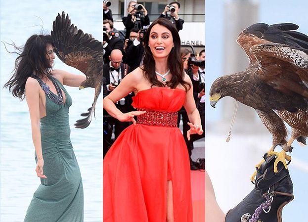 Rumuńska top-modelka WALCZY Z DRAPIEŻNYM PTAKIEM na plażach Cannes!