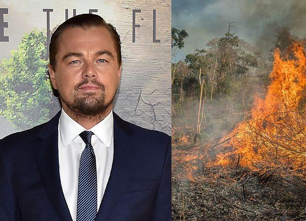 Leonardo DiCaprio przeznaczył PIĘĆ MILIONÓW dolarów na walkę z pożarem Amazonii!