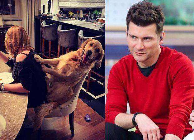 """Pies Tomka Kammela """"masuje"""" jego dziewczynę (FOTO)"""