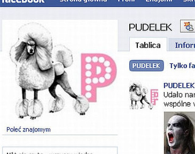 Po co Pudelkowi Facebook?