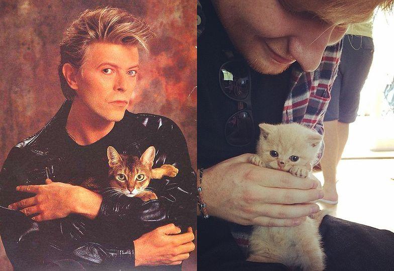 David Bowie i Ed Sheeran