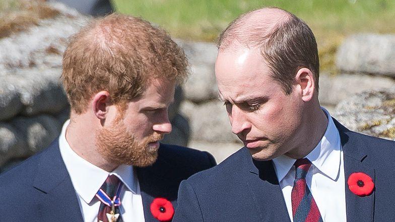 """""""Ekspert od rojalsów"""" o konflikcie Harry'ego i Williama: """"Masz KRÓLA na zamku, to musisz mieć też ŁAJDAKA"""""""
