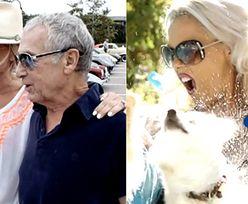 """TVN reklamuje """"Żony Hollywood"""": """"Mężowie muszą rozpieszczać polskie żony!"""""""