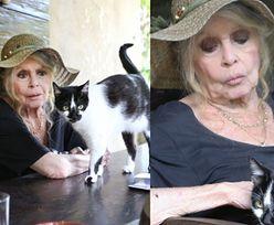 Brigitte Bardot w urodzinowej sesji! (ZDJĘCIA)