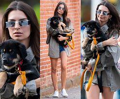 Emily Ratajkowski chwali się nowym szczeniakiem na nowojorskim chodniku