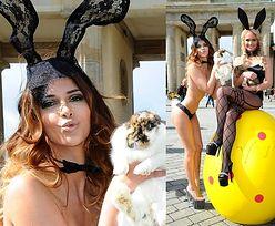 "Niemiecka ""Top Model"" na Wielkanoc..."