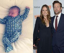 Olivia Wilde pokazała córkę na Instagramie. Znamy jej imię!