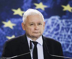 """Jarosław Kaczyński OLŚNIEWA w niemieckim garniturze: """"W końcu ma dobrze dopasowaną marynarkę"""""""