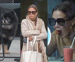 Obwieszona metkami Gucci Kinga Rusin i jej towarzysz Czarek Lis napełniają brzuchy w warszawskiej knajpce (ZDJĘCIA)