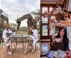 Grzegorz Krychowiak i Celia Jaunat na kolejnych wakacjach w luksusach. Też chcielibyście zjeść śniadanie z żyrafami? (ZDJĘCIA)