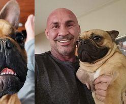 """Przemysław Saleta ZAADOPTOWAŁ niepełnosprawnego psa! """"Bardzo się zmienił od momentu, kiedy go wziąłem"""""""