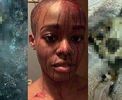 Azealia Banks WYKOPAŁA szczątki swojego kota, po czym UGOTOWAŁA je w garnku. Wszystko zrelacjonowała na Instagramie