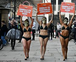 Rozebrane aktywistki PETA protestują w maskach krokodyla (ZDJĘCIA)