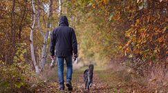 Mandaty dla właścicieli psów. Nowe zasady od 10 kwietnia