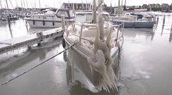 Atak zimy w Holandii. W porcie lód pokrył niemal wszystko