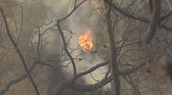 Pożary w Grecji rujnują kraj. Mieszkańcy są załamani