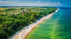 """Niecodzienny problem na plażach Mielna. """"Wczasowicze uznają to za wielką atrakcję"""""""