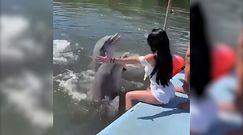 Kuba. Zaskakujący finał wizyty w delfinarium
