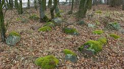 Średniowieczne cmentarzyska na Mazowszu. Tajemnica 500 nekropolii