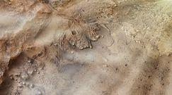 Kolejne dowody na istnienie życia na Marsie. Sukces łazika Perservence od NASA