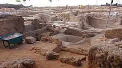 Największa fabryka wina w Izraelu. Wielkie odkrycie sprzed 1,5 tys. lat