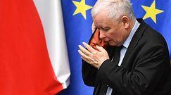 """Kaczyński o """"cwaniakach"""". Posłanka tłumaczy"""