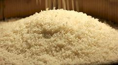 Ryż zwiększa ryzyko śmierci na choroby serca. Badania naukowe wyjaśniają